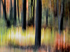 The edge of the woods at sunset. This is a single exposure with the blur effect achieved by flipping the camera up. Then brought into editing for slight color saturation.