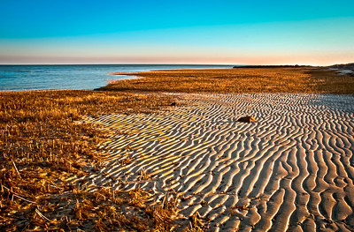 Brewster, Ma     Cape Cod Paine's Creek at low tide sunrise