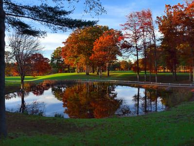 Poquoy Brook ....back to the Dailies...http://www.smugmug.com/community/DailyPhotos/popular/today/1/700684083_Qc6MZ#700684083_Qc6MZ